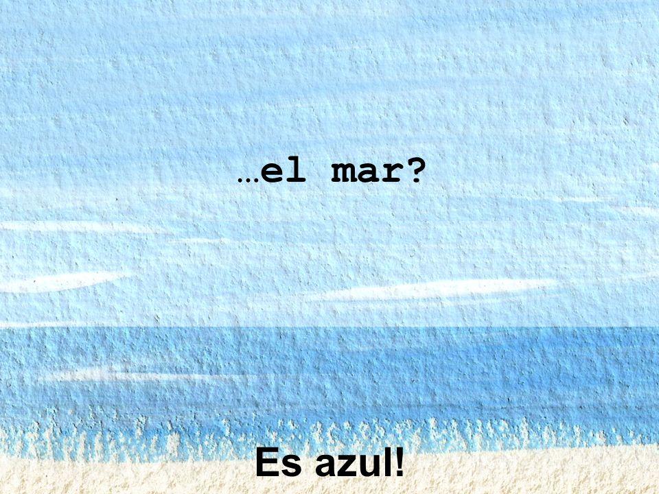 …el mar Es azul!