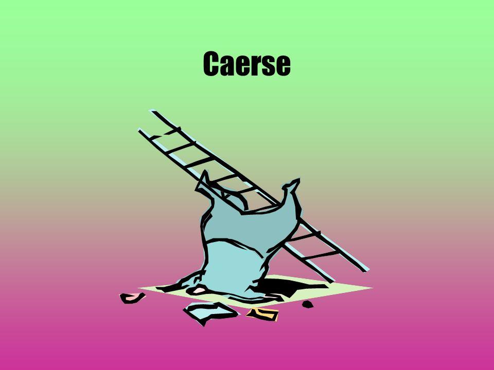 Caerse