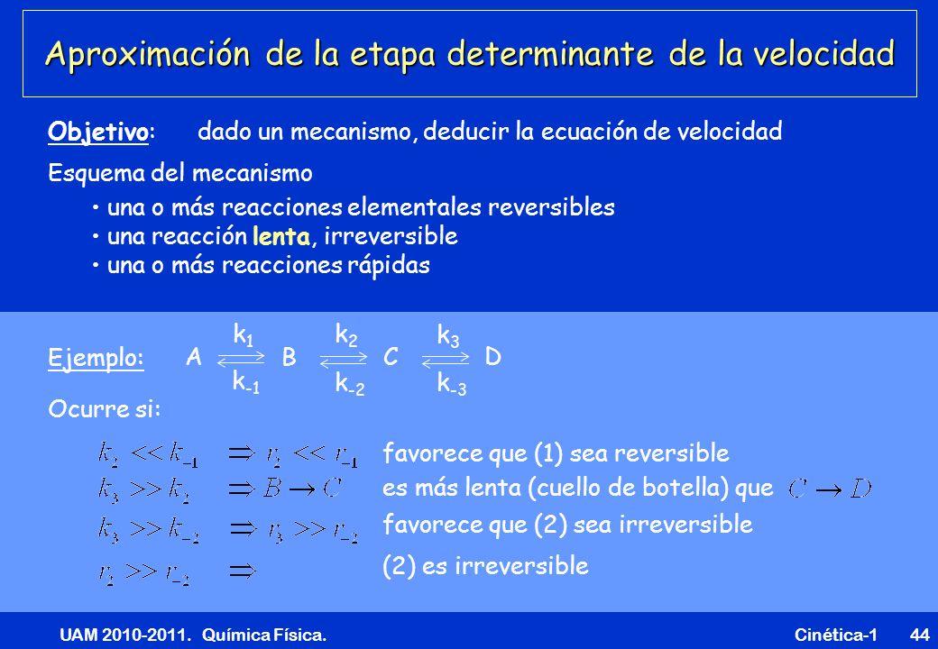 UAM 2010-2011. Química Física. Cinética-144 Aproximación de la etapa determinante de la velocidad Esquema del mecanismo una o más reacciones elemental