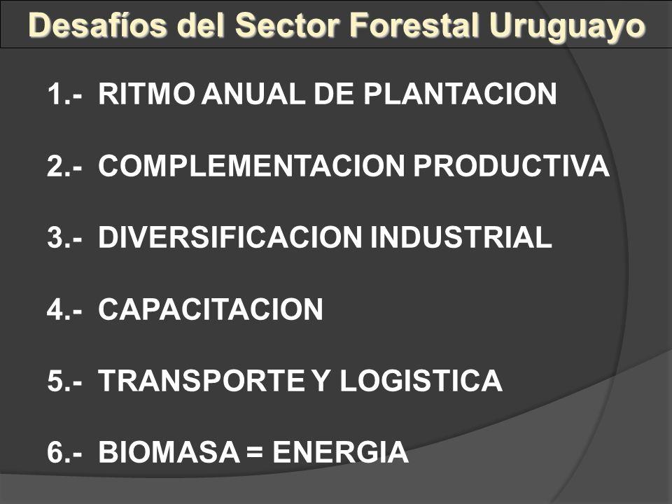1.- RITMO ANUAL DE PLANTACION 2.- COMPLEMENTACION PRODUCTIVA 3.- DIVERSIFICACION INDUSTRIAL 4.- CAPACITACION 5.- TRANSPORTE Y LOGISTICA 6.- BIOMASA =