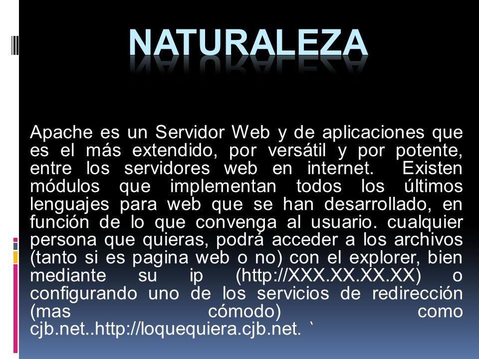 Apache es un Servidor Web y de aplicaciones que es el más extendido, por versátil y por potente, entre los servidores web en internet. Existen módulos