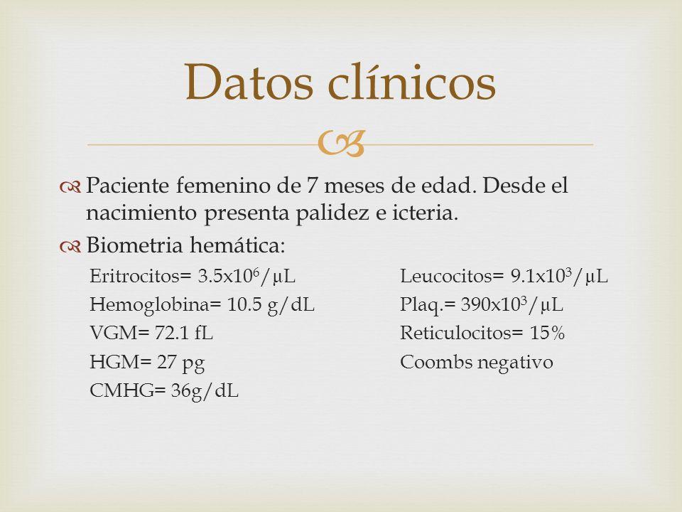 Paciente femenino de 7 meses de edad. Desde el nacimiento presenta palidez e icteria. Biometria hemática: Eritrocitos= 3.5x10 6 /µL Leucocitos= 9.1x10