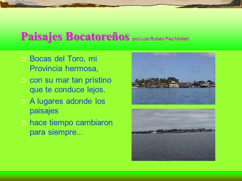 Paisajes Bocatoreños por Luis Rubén Paz Mollah Bocas del Toro, mi Provincia hermosa, con su mar tan prístino que te conduce lejos. A lugares adonde lo