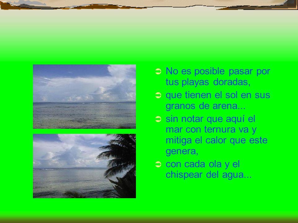 No es posible pasar por tus playas doradas, que tienen el sol en sus granos de arena... sin notar que aquí el mar con ternura va y mitiga el calor que