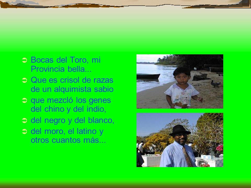 Bocas del Toro, mi Provincia bella... Que es crisol de razas de un alquimista sabio que mezcló los genes del chino y del indio, del negro y del blanco
