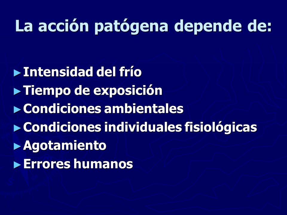 La acción patógena depende de: Intensidad del frío Intensidad del frío Tiempo de exposición Tiempo de exposición Condiciones ambientales Condiciones a