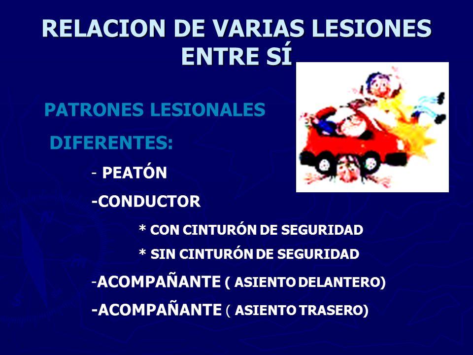 RELACION DE VARIAS LESIONES ENTRE SÍ PATRONES LESIONALES DIFERENTES: - PEATÓN -CONDUCTOR * CON CINTURÓN DE SEGURIDAD * SIN CINTURÓN DE SEGURIDAD -ACOM