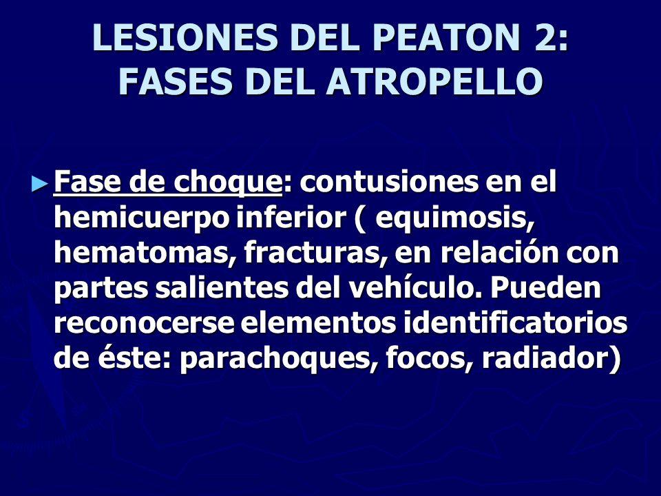 LESIONES DEL PEATON 2: FASES DEL ATROPELLO Fase de choque: contusiones en el hemicuerpo inferior ( equimosis, hematomas, fracturas, en relación con pa