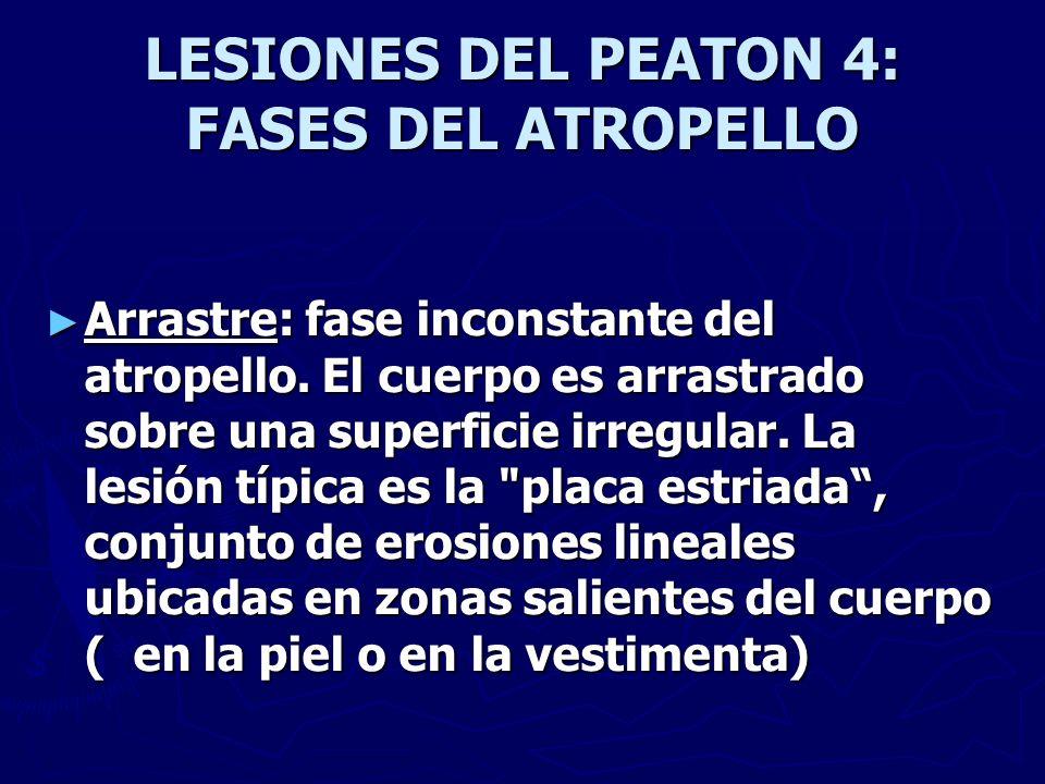 LESIONES DEL PEATON 4: FASES DEL ATROPELLO Arrastre: fase inconstante del atropello. El cuerpo es arrastrado sobre una superficie irregular. La lesión