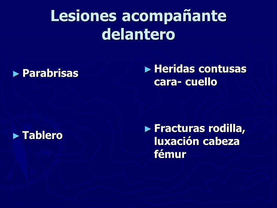 Lesiones acompañante delantero Parabrisas Parabrisas Tablero Tablero Heridas contusas cara- cuello Fracturas rodilla, luxación cabeza fémur