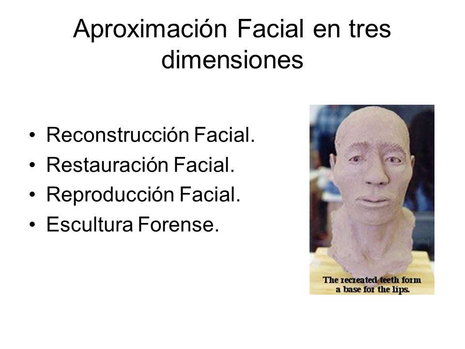 Aproximación Facial en tres dimensiones Reconstrucción Facial.