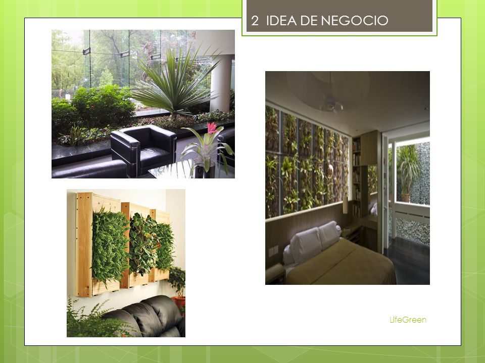 LifeGreen 2 IDEA DE NEGOCIO