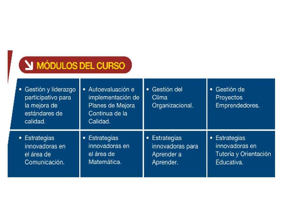 COMPONENTES DEL PROGRAMA: Curso modular de especialización a distancia Sesiones presenciales por cada módulo Módulos auto instructivos Tutoría permanente para cada IE Intercambio de experiencias entre participantes.