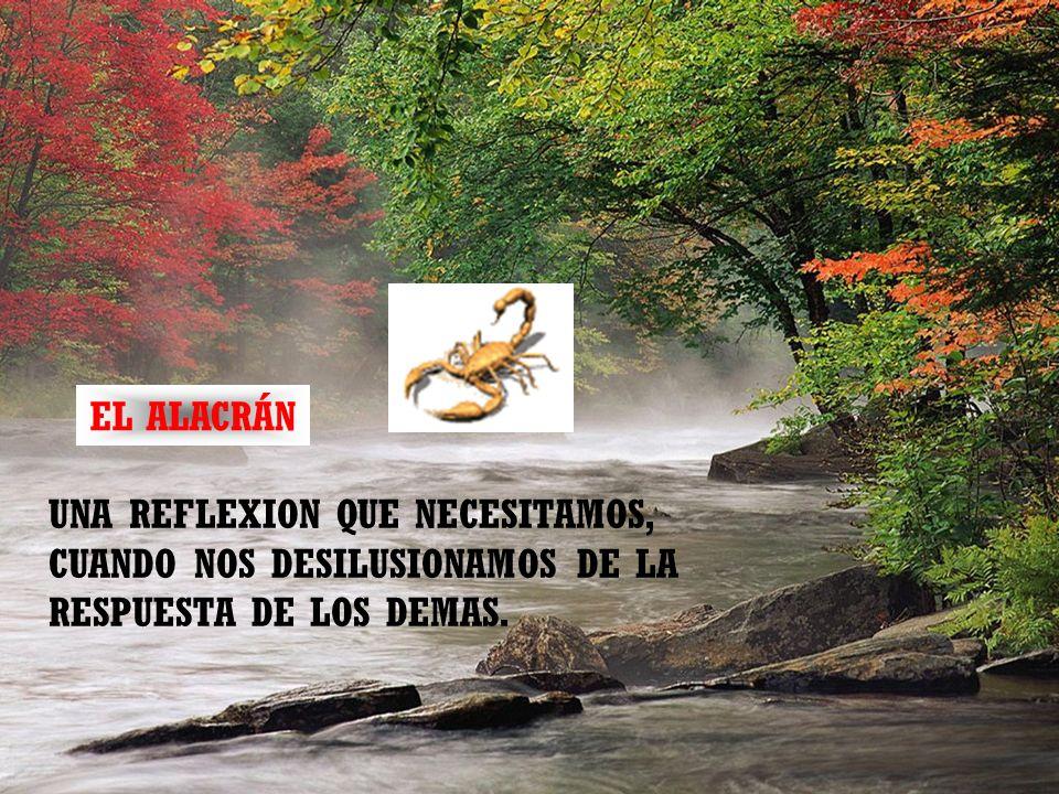 EL ALACRÁN UNA REFLEXION QUE NECESITAMOS, CUANDO NOS DESILUSIONAMOS DE LA RESPUESTA DE LOS DEMAS.
