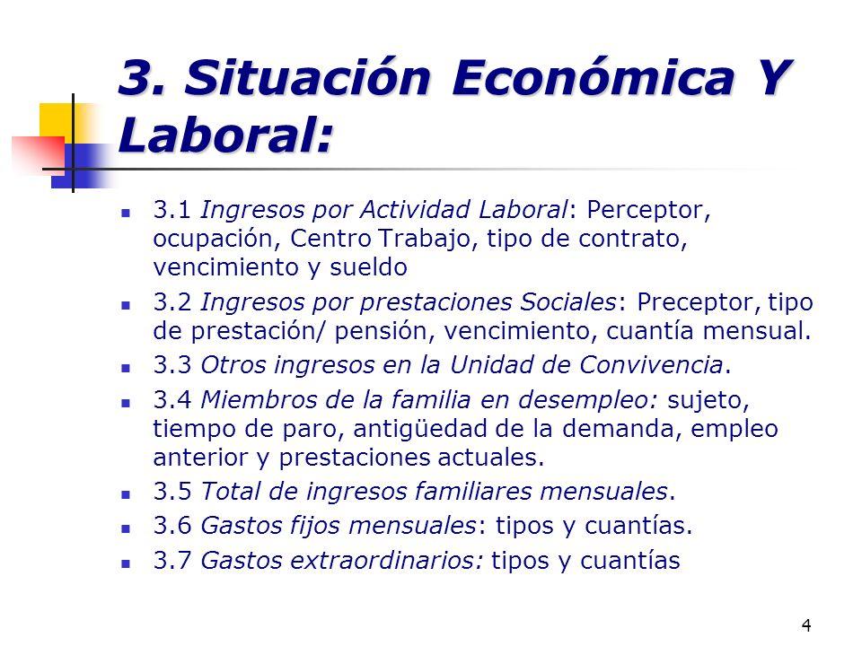 4 3. Situación Económica Y Laboral: 3.1 Ingresos por Actividad Laboral: Perceptor, ocupación, Centro Trabajo, tipo de contrato, vencimiento y sueldo 3