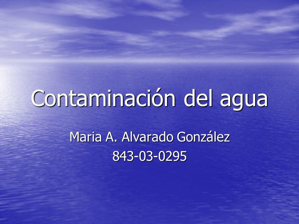 Contaminación del agua Maria A. Alvarado González 843-03-0295