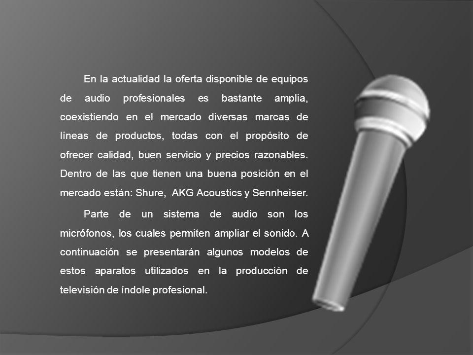 En la actualidad la oferta disponible de equipos de audio profesionales es bastante amplia, coexistiendo en el mercado diversas marcas de líneas de productos, todas con el propósito de ofrecer calidad, buen servicio y precios razonables.