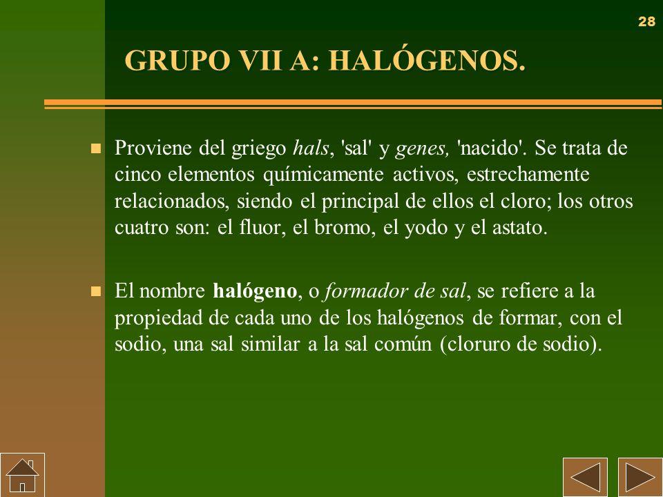 28 GRUPO VII A: HALÓGENOS. n Proviene del griego hals, 'sal' y genes, 'nacido'. Se trata de cinco elementos químicamente activos, estrechamente relaci