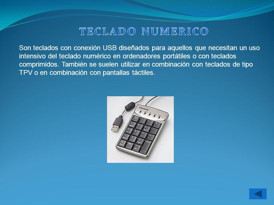 Son teclados con conexión USB diseñados para aquellos que necesitan un uso intensivo del teclado numérico en ordenadores portátiles o con teclados com