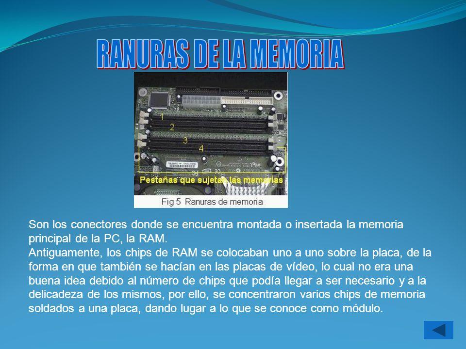 Son los conectores donde se encuentra montada o insertada la memoria principal de la PC, la RAM. Antiguamente, los chips de RAM se colocaban uno a uno