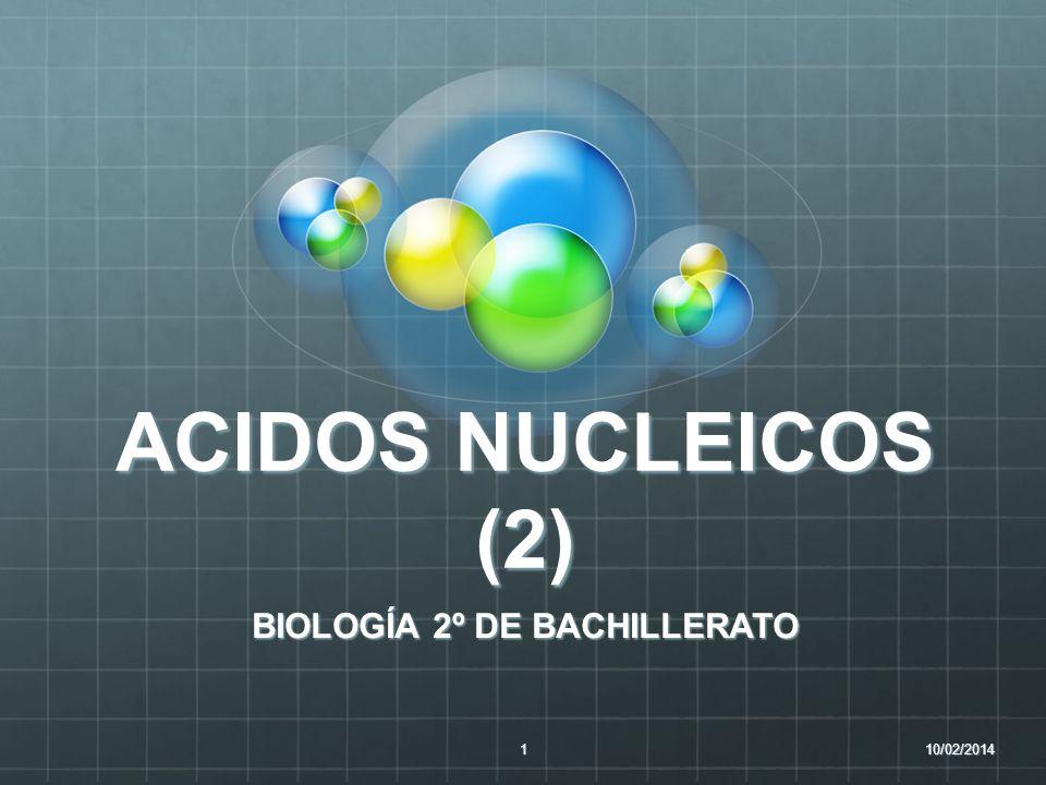 ACIDOS NUCLEICOS (2) BIOLOGÍA 2º DE BACHILLERATO 10/02/20141
