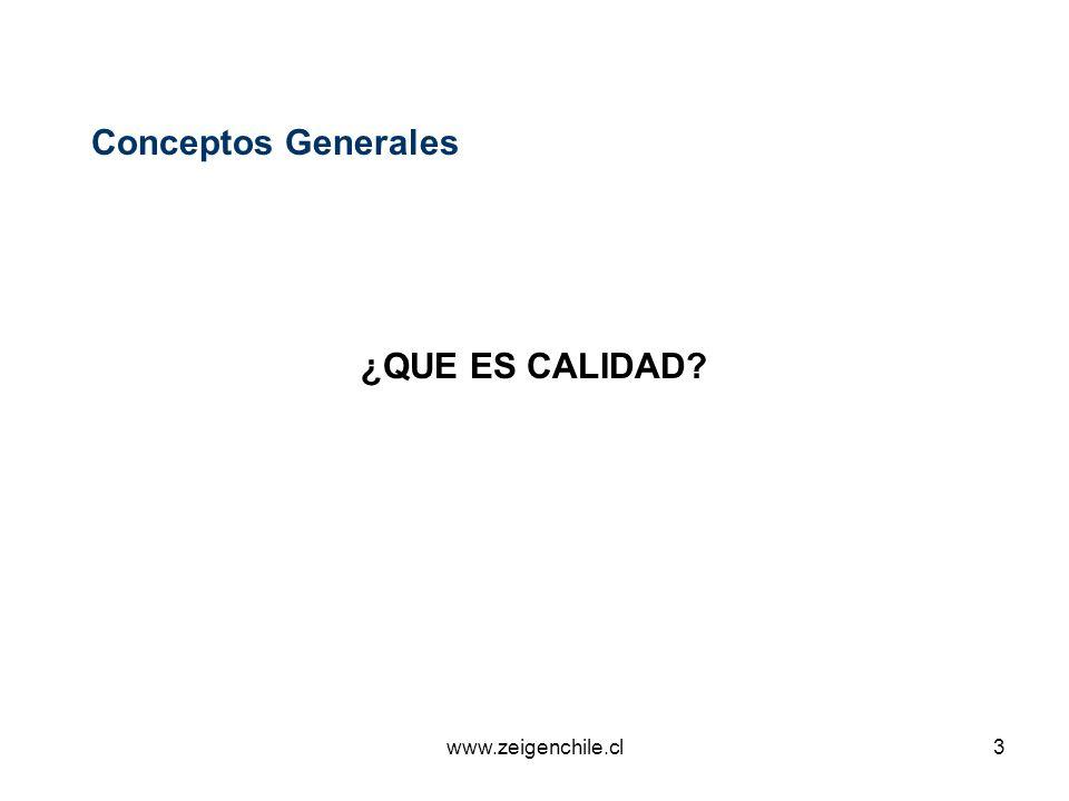 www.zeigenchile.cl14 Conceptos Generales No Conformidad El no cumplimiento de un requisito especificado.