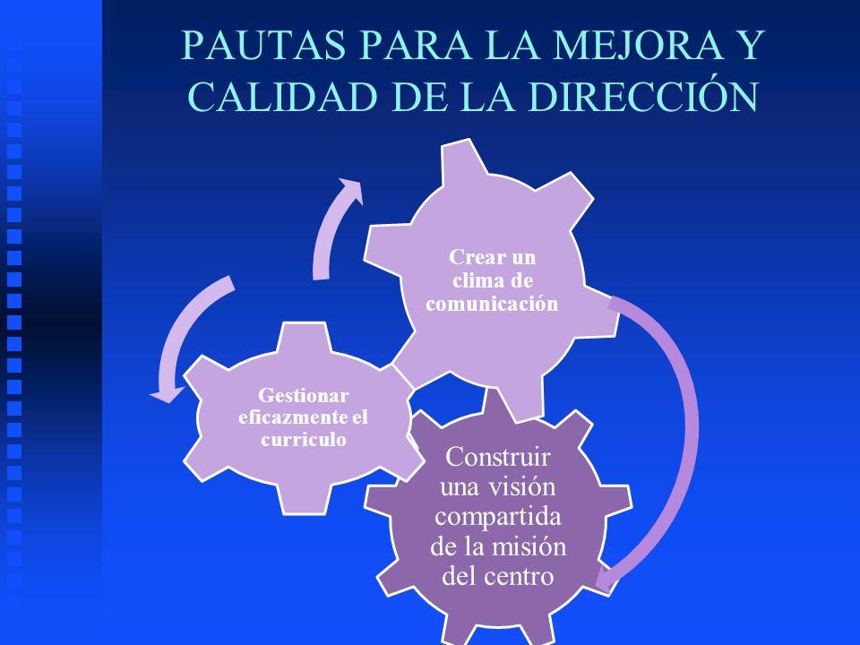 Construir una visión compartida de la misión del centro Gestionar eficazmente el curriculo Crear un clima de comunicación PAUTAS PARA LA MEJORA Y CALI