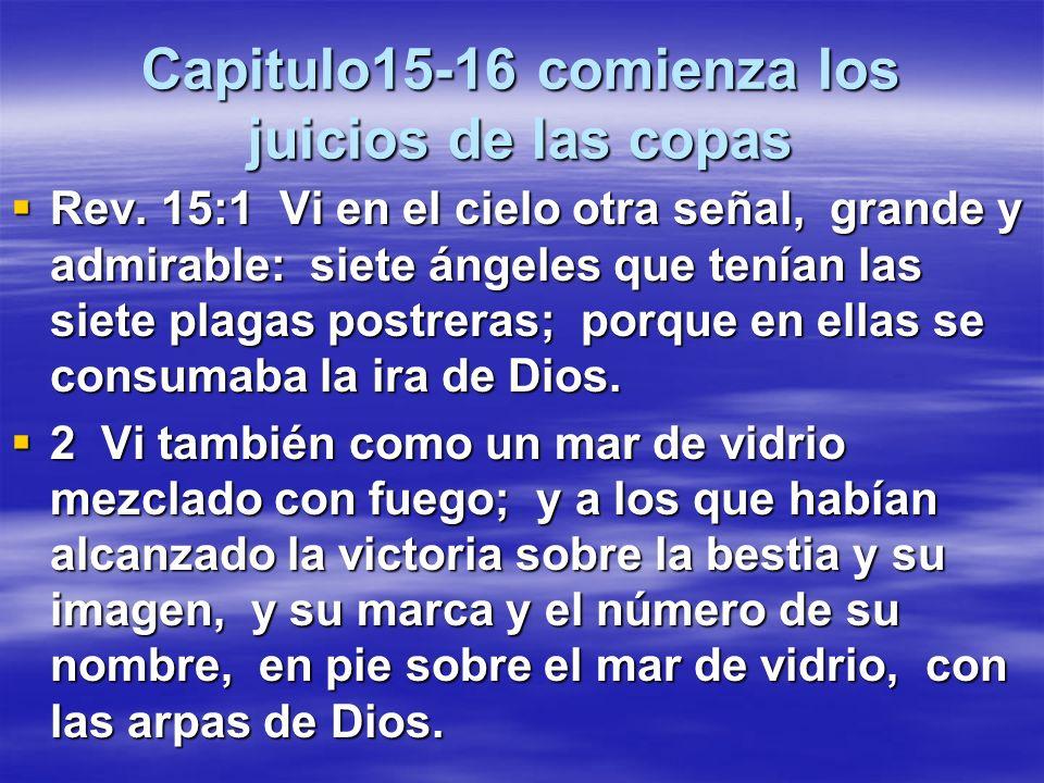Capitulo 14 el fin de los redimidos Mientras en el capitulo 13 vemos la devastación con el diablo y sus demonios aquí vemos fiesta en el cielo con los Cristianos de todas las épocas que disfrutaran de los beneficios de la eternidad.