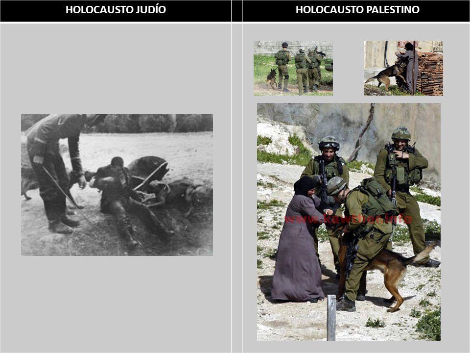 HOLOCAUSTO JUDÍO HOLOCAUSTO PALESTINO Masacre de Deir Yasin - 1948 Masacre de Qybia - 1953