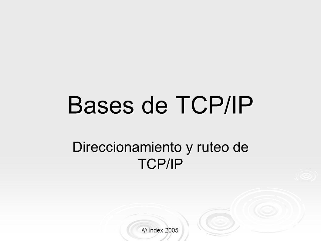 © Index 2005 Bases de TCP/IP Direccionamiento y ruteo de TCP/IP