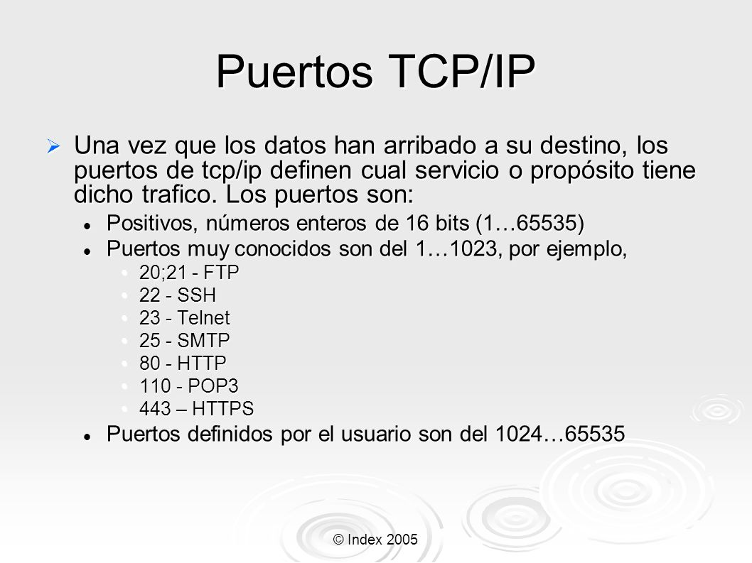 © Index 2005 Puertos TCP/IP Una vez que los datos han arribado a su destino, los puertos de tcp/ip definen cual servicio o propósito tiene dicho trafi