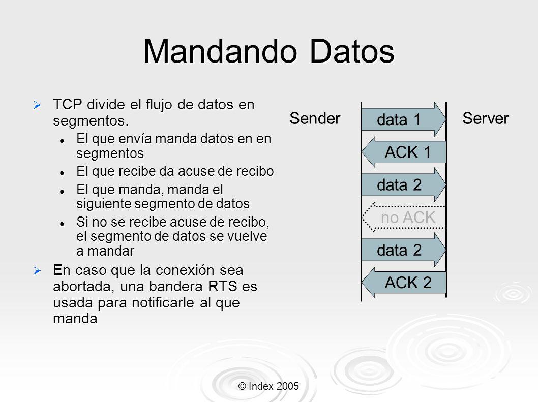 © Index 2005 Mandando Datos TCP divide el flujo de datos en segmentos. TCP divide el flujo de datos en segmentos. El que envía manda datos en en segme