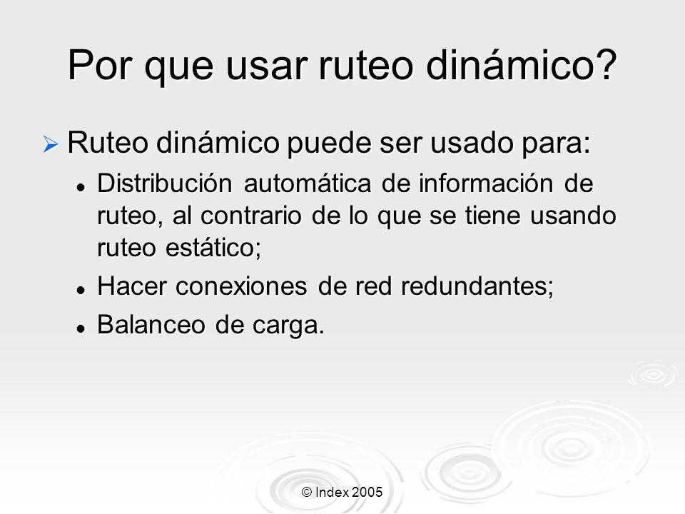 © Index 2005 Por que usar ruteo dinámico.