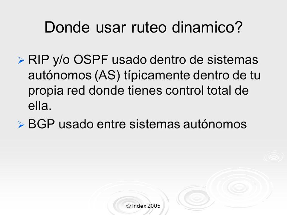 © Index 2005 Donde usar ruteo dinamico.
