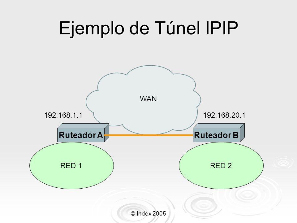 © Index 2005 Adicionando una interface IPIP