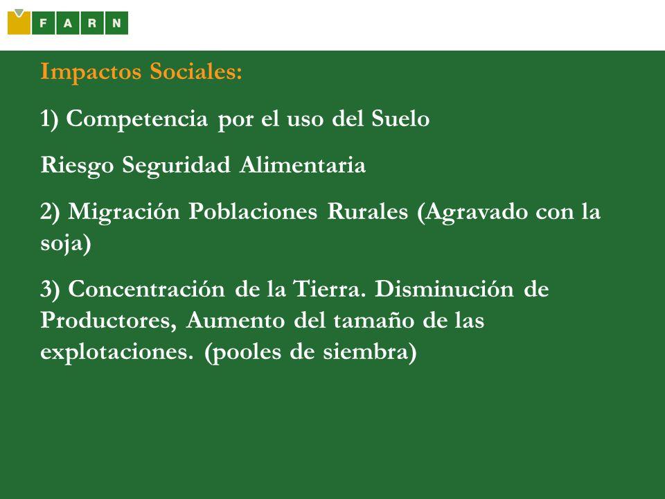 Impactos Sociales: 1) Competencia por el uso del Suelo Riesgo Seguridad Alimentaria 2) Migración Poblaciones Rurales (Agravado con la soja) 3) Concent