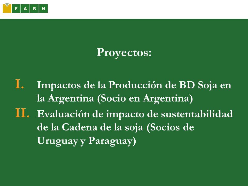 Proyectos: I. Impactos de la Producción de BD Soja en la Argentina (Socio en Argentina) II. Evaluación de impacto de sustentabilidad de la Cadena de l