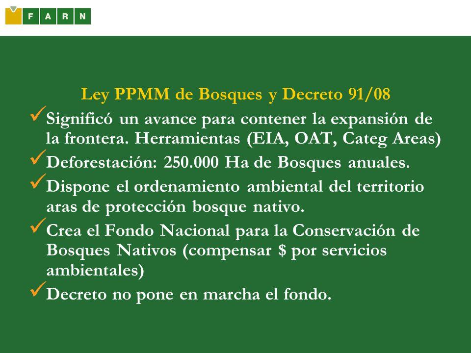 Ley PPMM de Bosques y Decreto 91/08 Significó un avance para contener la expansión de la frontera. Herramientas (EIA, OAT, Categ Areas) Deforestación: