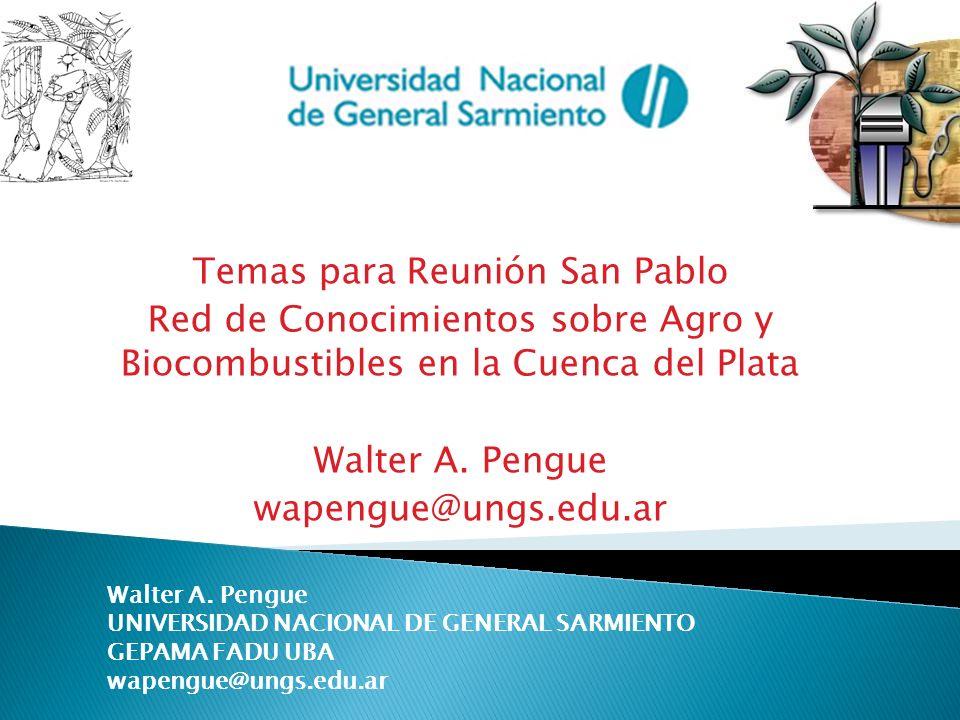 Temas para Reunión San Pablo Red de Conocimientos sobre Agro y Biocombustibles en la Cuenca del Plata Walter A. Pengue wapengue@ungs.edu.ar Walter A.