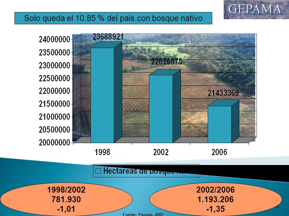 10/02/201418 1998/2002 781.930 -1,01 2002/2006 1.193.206 -1,35 Solo queda el 10,85 % del pais con bosque nativo Fuente: Pengue, 2007