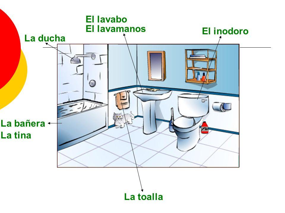 El lavabo El lavamanos La ducha La bañera El inodoro La tina La toalla