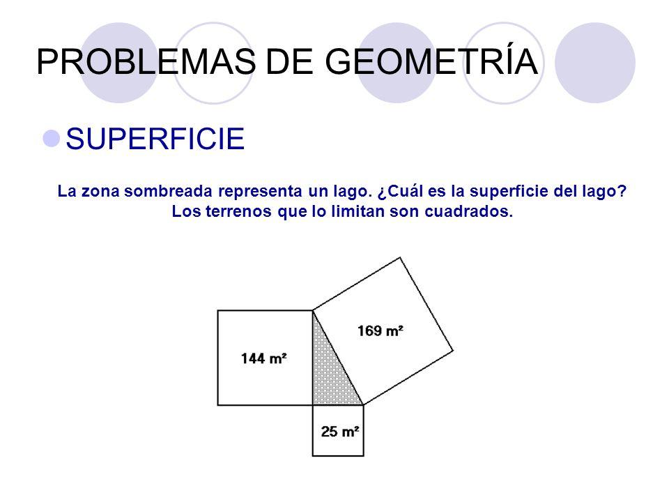 PROBLEMAS DE GEOMETRÍA SUPERFICIE La zona sombreada representa un lago. ¿Cuál es la superficie del lago? Los terrenos que lo limitan son cuadrados.