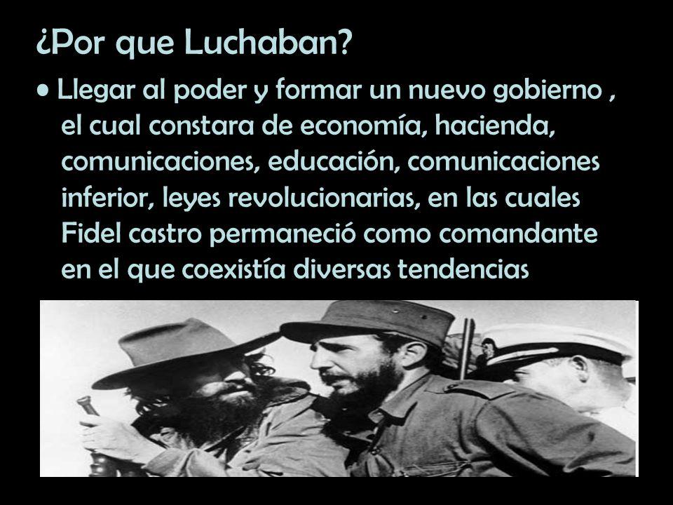 ¿Por que Luchaban? Llegar al poder y formar un nuevo gobierno, el cual constara de economía, hacienda, comunicaciones, educación, comunicaciones infer