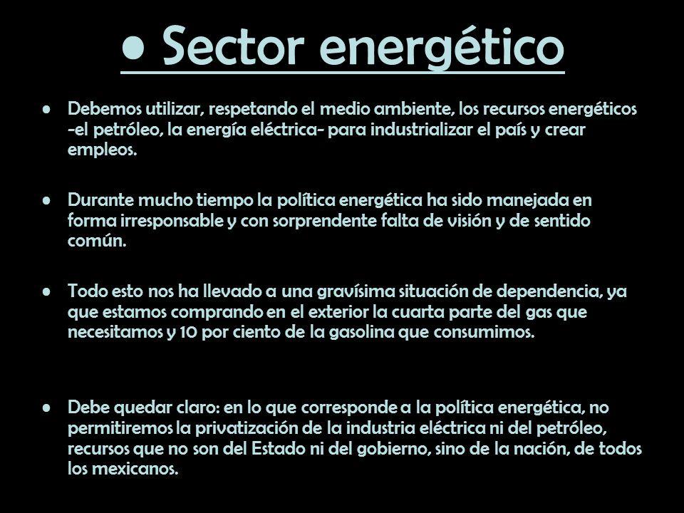 Sector energético Debemos utilizar, respetando el medio ambiente, los recursos energéticos -el petróleo, la energía eléctrica- para industrializar el
