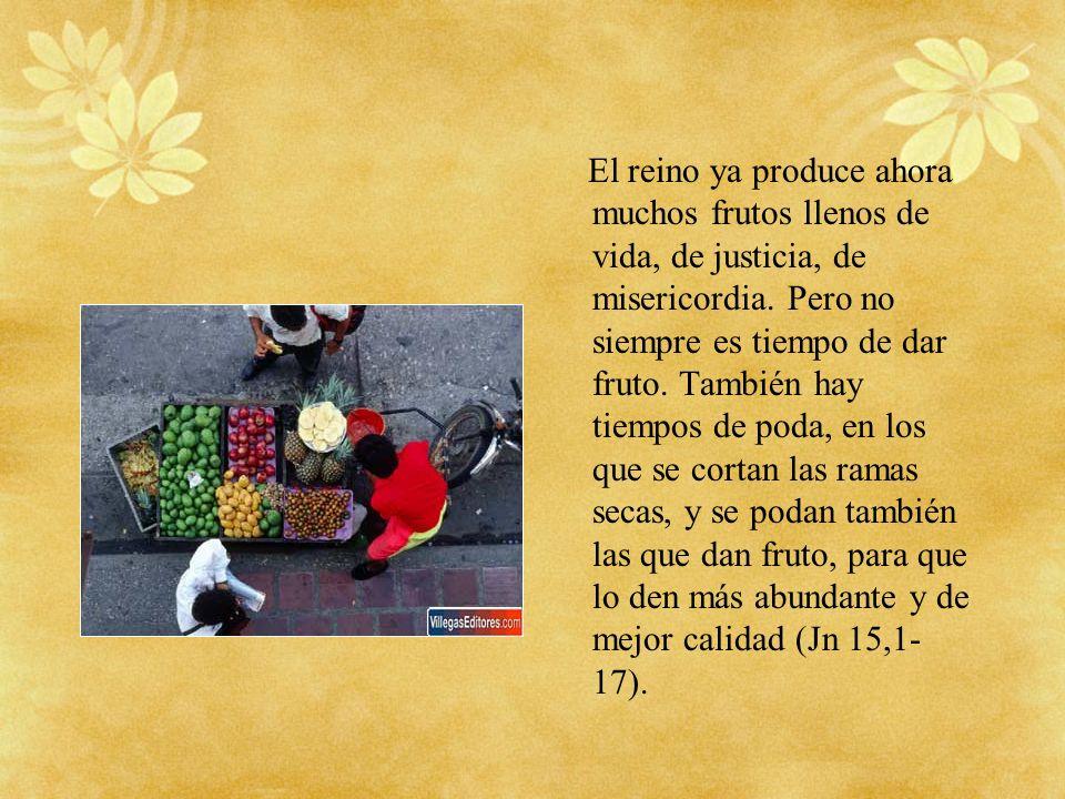 El reino ya produce ahora muchos frutos llenos de vida, de justicia, de misericordia. Pero no siempre es tiempo de dar fruto. También hay tiempos de p