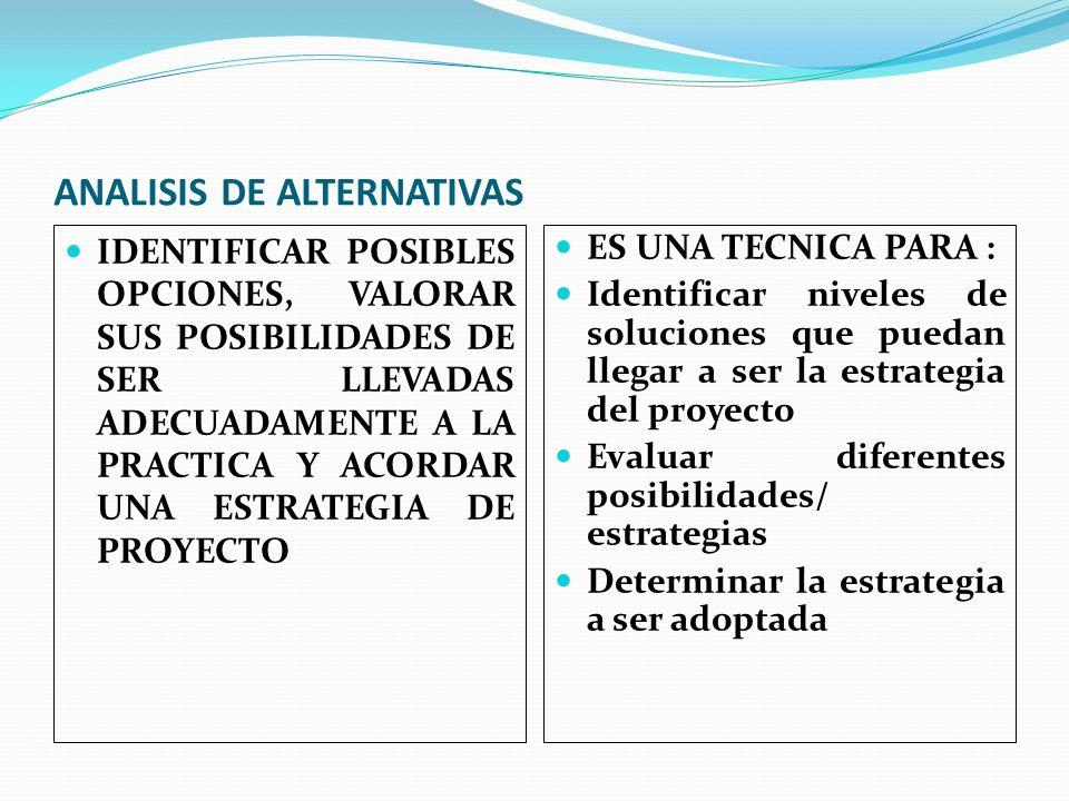 ANALISIS DE ALTERNATIVAS IDENTIFICAR POSIBLES OPCIONES, VALORAR SUS POSIBILIDADES DE SER LLEVADAS ADECUADAMENTE A LA PRACTICA Y ACORDAR UNA ESTRATEGIA