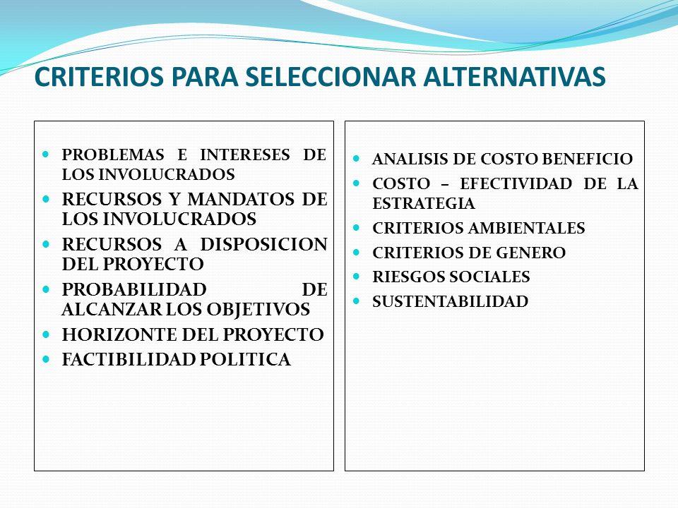 CRITERIOS PARA SELECCIONAR ALTERNATIVAS PROBLEMAS E INTERESES DE LOS INVOLUCRADOS RECURSOS Y MANDATOS DE LOS INVOLUCRADOS RECURSOS A DISPOSICION DEL P
