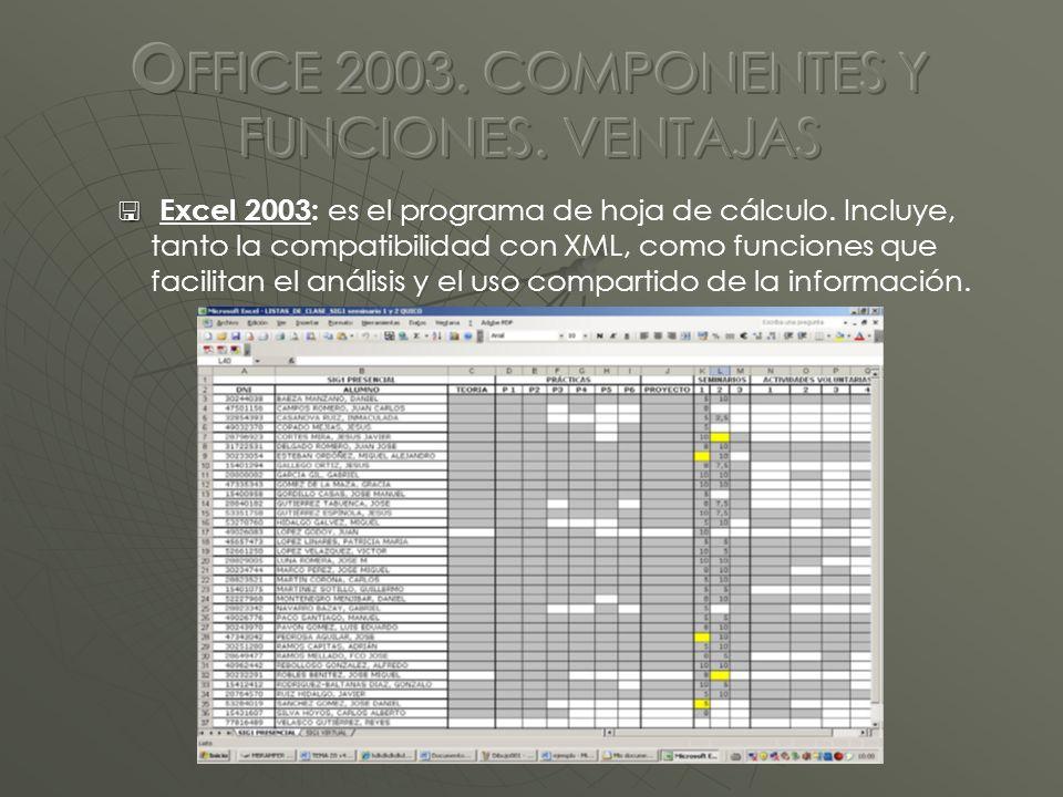 Excel 2003: es el programa de hoja de cálculo.