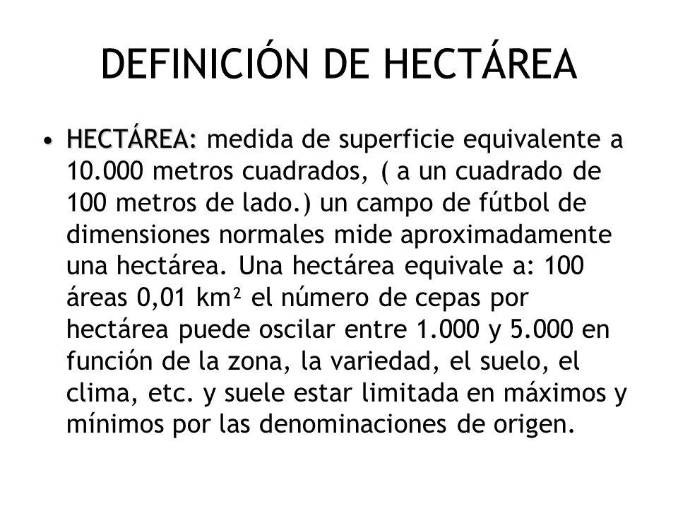 DEFINICIÓN DE HECTÁREA HECTÁREA:HECTÁREA: medida de superficie equivalente a 10.000 metros cuadrados, ( a un cuadrado de 100 metros de lado.) un campo