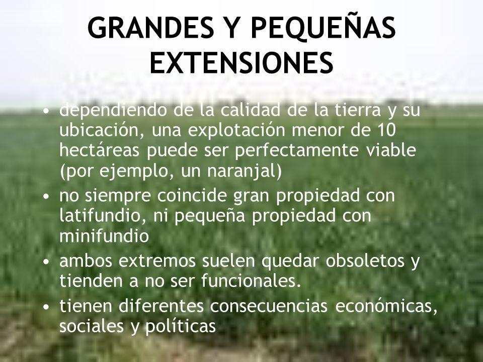 GRANDES Y PEQUEÑAS EXTENSIONES dependiendo de la calidad de la tierra y su ubicación, una explotación menor de 10 hectáreas puede ser perfectamente vi